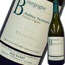 ドメーヌ・ジャン・リケール・ブルゴーニュ・ノーブル・テロワール 2015 ワイン 白ワイン