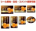 【柑橘・カスタマイズ可能】せとかシール【商品の販売応援/野菜・果物・ラッピング】