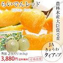 らいでんレッドメロン 秀品 2玉 約3Kg 北海道JAきょう...