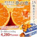 \最大400円OFFクーポンあり/ 熊本夢未来 夢の恵 S?Mサイズ 約5kg JA熊本市 産地直送