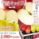 サンふじ 王林 りんご ミックス 特A 約3kg 9〜13玉...