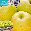 りんご 王林 訳あり 約5kg 16〜20玉 高木商店 青森県 送料無料 産地直送
