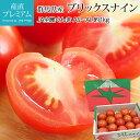 高糖度フルーツトマト ブリックスナイン