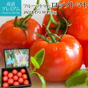 フルーツトマト 高糖度 ロッソトマト 約
