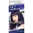 【送料無料・まとめ買い×27個セット】hoyu ホーユー ビューティーン メイクアップ カラー ブルーバイオレット 1セット