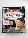 花王 めぐりズム 蒸気でホットアイマスク メンズ 無香料 5枚入/4901301348166/アイケア用品