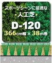 人工芝 D-120 366cm幅×38m巻乱 パイル19mm長 1本