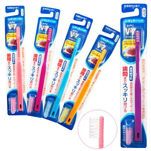 歯ブラシ レギュラー ピー・エム・ジェー