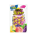 噛むブレスケア パウチアソート 100粒 【小林製薬】