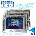 【送料無料】COOLER SHOCK(クーラーショック)Lサイズ 3個セット 保冷剤 アイスパック 保冷 アウトドア