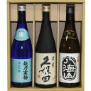 (送料無料)人気日本銘酒 越乃寒梅 灑(さい)純米吟醸