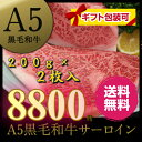 【 A5ランク 黒毛和牛 】 サーロインステーキ セット [2枚:400g] 《 送料無料 》 鹿児...