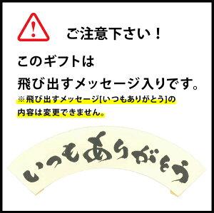 よなよなエールの金賞ギフト5種10缶【送料無料】