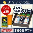 【送料無料】よなよなエール入り母の日ギフト 3種6缶のクラフトビールギフト 全て金賞