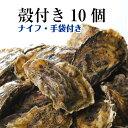 【牡蠣 殻付き 広島産 10個】 広島牡蠣生産者米田海産が育てた殻付き牡蠣 生牡蠣 加熱用