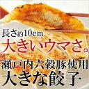 瀬戸内六穀豚使用 大きな餃子 餃子 ギョウザ 国産豚肉 国産...