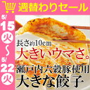 <週替わりセール200円OFF>瀬戸内六穀豚使用 大きな餃子 餃子 ギョウザ 国産豚肉 国