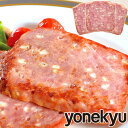 <アウトレットセール> 国産豚肉使用 チーズケーゼ 【4月22日までのお届け日がご指定