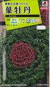 ★送料90円メール便OK★【葉牡丹の種】F1 紅かもめ【タキイ交配】(0.5ml)ハボタン [夏まき]【RCP】