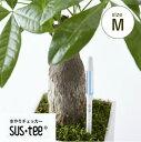 水分計サスティー(Mサイズ)3.5、4、5、6号鉢用水やり,観葉植物,洋蘭,多肉植物