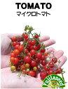 ★送料90円メール便OK★【マイクロトマトの種】30粒【藤田種子】春まき野菜種【RCP】