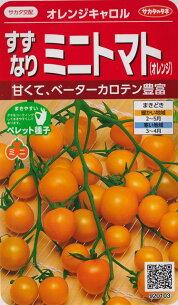 オレンジ オレンジキャロル ペレット