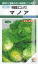 ★ 送料90円メール便OK ★ 【半結球ミニレタス】マノア【タキイ種苗】(2ml)野菜種【RCP】