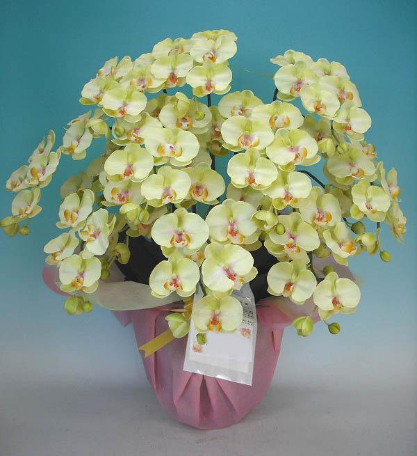 【光触媒】【造花】胡蝶蘭 大輪 ライトグリーン M 10本立ち【造花】【送料無料】 本物そっくりで生花と間違うほど精巧です。