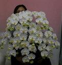 【光触媒】【造花】胡蝶蘭 大輪 白 M 10本立ち 人工造花【送料無料】