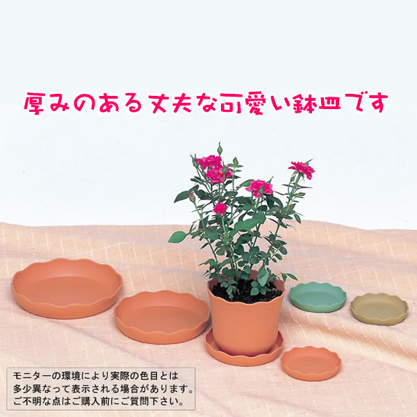 ノーブルプレート4号3個セット【鉢皿】