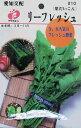 葉だいこん・リーフレッシュ 種(タネ)【メール便OK】【RCP】 05P01Oct16