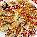 【冷凍商品】焼餃子 30個入(600g)耀盛號(ようせいごう・ヨウセイゴウ)