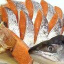 本物の天然塩鮭 半身【鮭本来の味をお楽しみ下さい。】【楽ギフ_包装選択】【楽ギフ_のし】