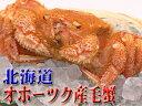 北海道オホーツク産毛蟹2,490円!みそ...