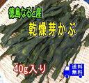 【徳島県なると産】(乾燥)芽かぶ(40g×1袋)磯の香りそのままにプリプリ食感が味わえます送料無料】メール便でお届け致します。