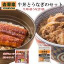 吉野家 牛丼の具6袋とうなぎ3袋セット【数量限定】