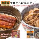 吉野家 冷凍牛丼の具12袋とうなぎ6袋12食セット