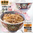 受験生応援セット 冷凍牛丼5袋とメラミンどんぶり(大盛サイズ)