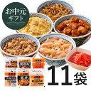 吉野家 新大人気セット6品11袋 冷凍食品