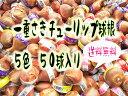 【送料無料】 チューリップ球根 5色×10球(赤、白、黄、紫、桃) 50球セット【9月下旬より発送】