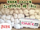 送料無料 青森産 ニューホワイトニンニク6片 種にんにく 10kg Mサイズ【国産】【にんにく種子】