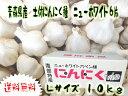 送料無料 土付 ニューホワイト6片 種にんにく 10kg Lサイズ【土付にんにく種】【青森県産】