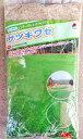 冬芝 サツキワセ 1kg 芝生ウインターオーバーシード専用種子 【タキイ種苗】【オーバーシード専用種子】