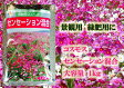 景観用コスモス センセーション混合 1kg(1kg・約700平米分) 【花の種】【タキイのタネ】【緑化事業】