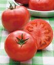 【郵便送料無料】桃太郎ピース 大玉トマト種子 1000粒 【トマト種】【タキイのタネ】【野菜の種】