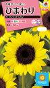 花種 NL300 ひまわり F1 サンリッチ レモン 小袋 FHM511 【花の種】【タキイのタネ】【送料110円〜】【ガーデニング】