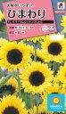 花種 NL300 ひまわり F1 サマーサンリッチ パイン45 小袋 FHM513 【花の種】【タキイのタネ】【送料110円〜】【ガーデニング】