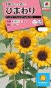 花種 NL300 ひまわり F1 サマーサンリッチ レモン45 小袋 FHM517 【花の種】【タキイのタネ】【送料110円〜】【ガーデニング】