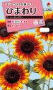 花種 NL300 ひまわり F1 ソーラーパワー 小袋 FHMA04 【花の種】【タキイのタネ】【送料110円〜】【ガーデニング】