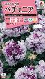 花種 小袋 ペチュニア F1パープル ピルエット (約50粒) 【花の種】【タキイのタネ】【送料110円〜】【ガーデニング】